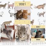 Egyedi fényképes cicás naptár