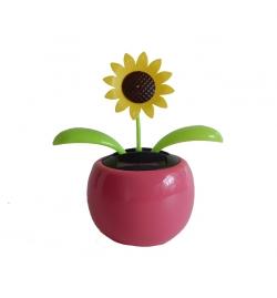 Napelemes mozgó virág