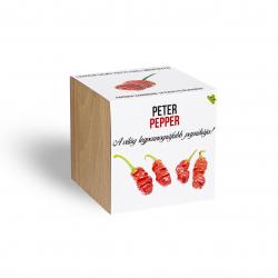 Peter Pepper chili paprika növényem fa kaspóban