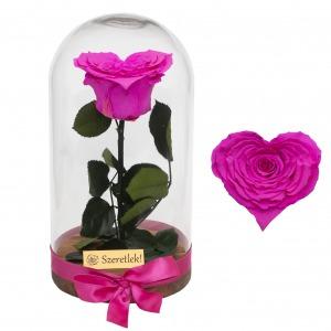Szív alakú örökrózsa búrában - pink