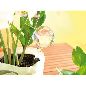 Vízadagoló növényekhez - 4db
